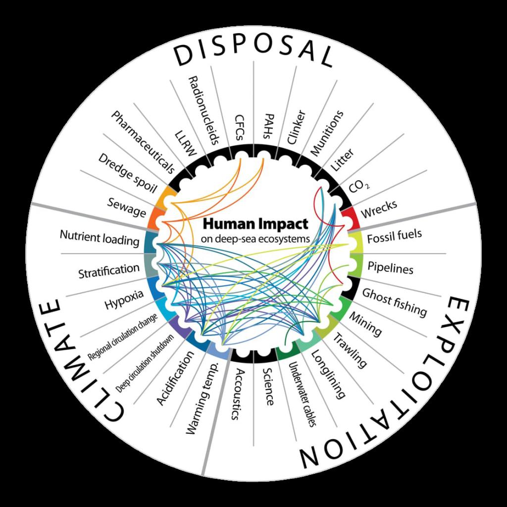 Human impact on deep-sea ecosystems
