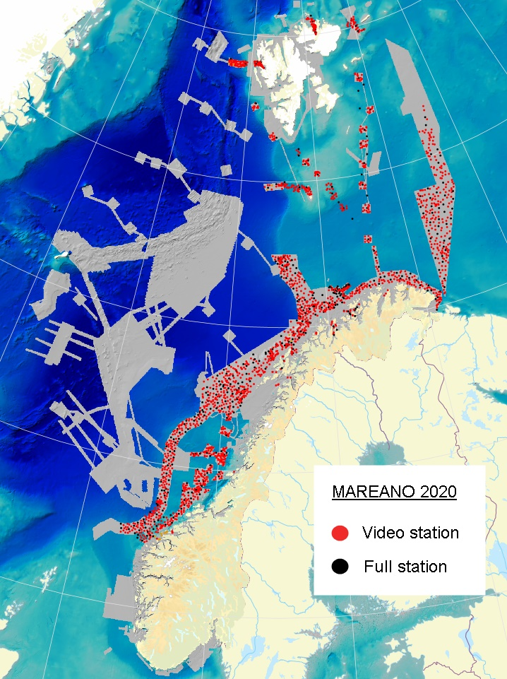 MAREANO seabed and habitat mapping project - distribution of video and full stations to date.