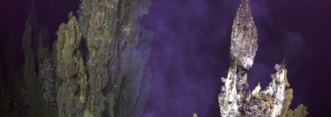 Photo of Niue Spire, hydrothermal vent, as featured in the DOSI deep sea mini course